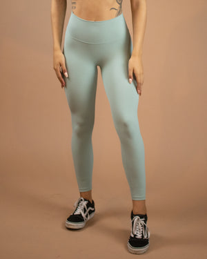 No Seam Leggings (High-Rise)- Frost