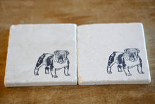 English Bulldog Dog Coasters - Lace, Grace & Peonies