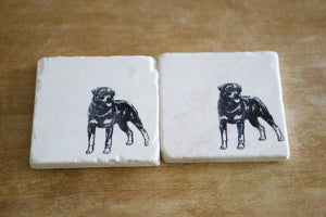Rottweiler Dog Coasters - Lace, Grace & Peonies