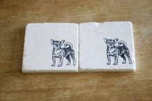 Chihuahua Dog Marble Coasters - Lace, Grace & Peonies