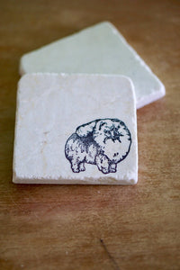Pomeranian Marble Coasters - Lace, Grace & Peonies
