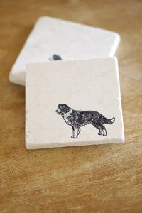 Border Collie Dog Marble Coaster Set - Lace, Grace & Peonies