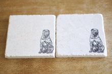 Shar Pei Dog Coasters - Lace, Grace & Peonies