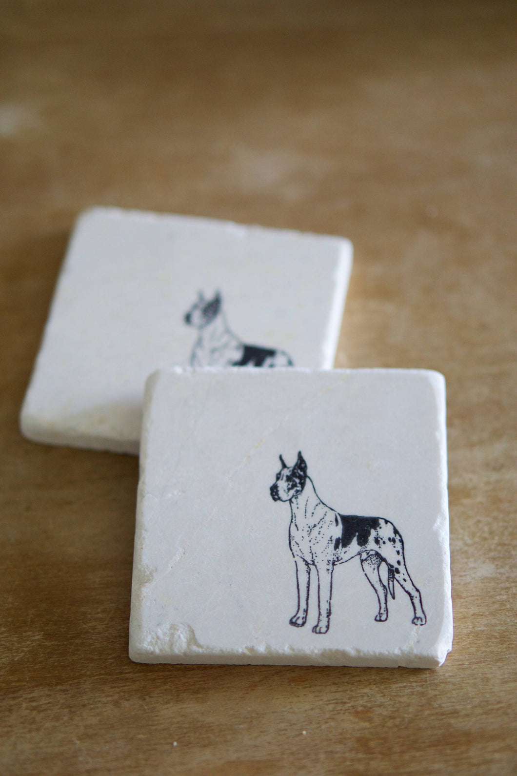 Great Dane Dog Marble Coasters - Lace, Grace & Peonies