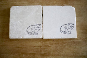 Grumpy Cat Coasters - Lace, Grace & Peonies