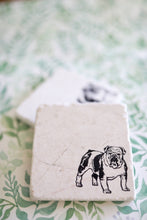 Bulldog Dog Marble Coasters - Lace, Grace & Peonies