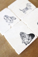 Basset Hound Coasters - Lace, Grace & Peonies