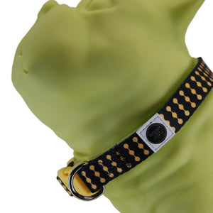 Ocean Lab Dog Collar-Vertical