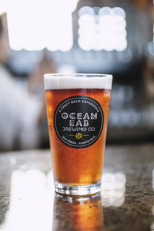 "Pint Glass - Ocean Lab ""Born On The Beach"""