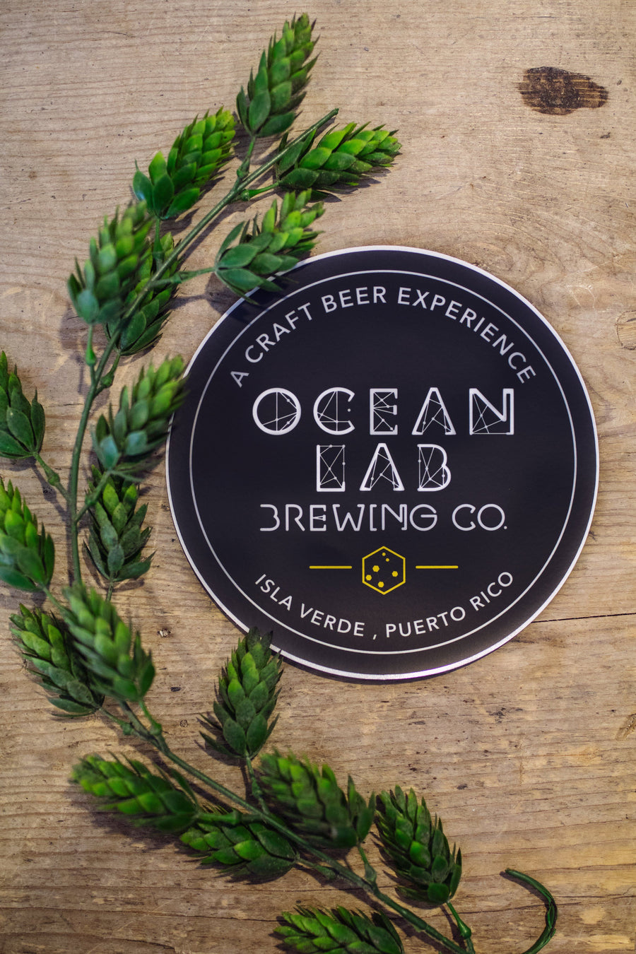 Sticker - Original Ocean Lab Logo
