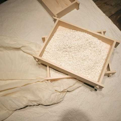 REMAEK Koji tray