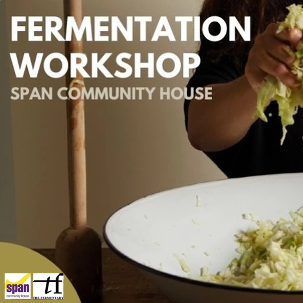 Sharon Flynn Fermentation workshop series