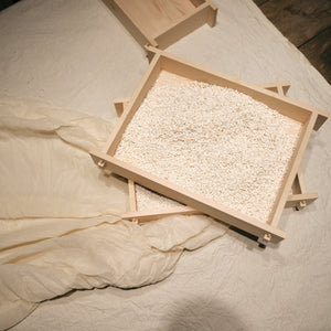 KOJI spores - 'tane or kin  - for growing RICE Koji