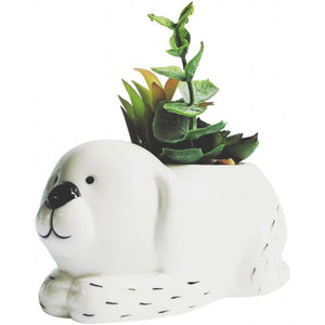 Dash Dog Planter w Succulents