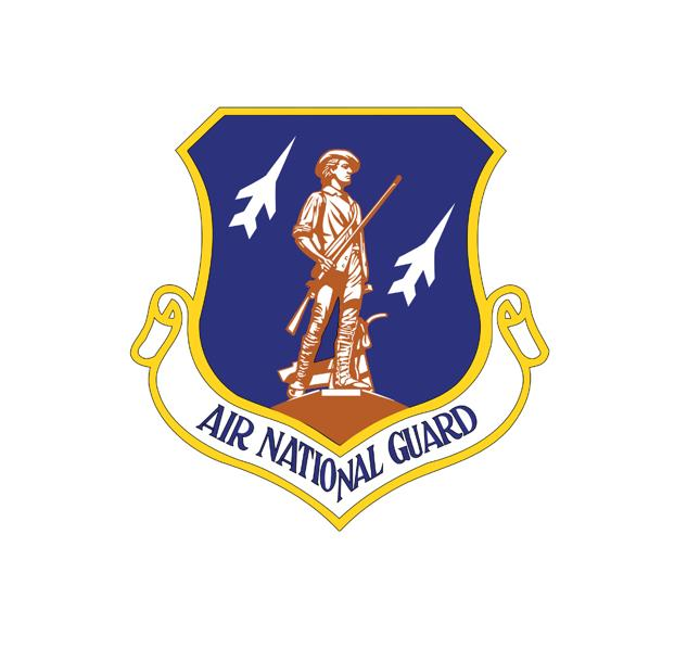 Air National Guard Decal - Air National Guard Sticker -  USAF Decal-Military Decal-Aviation Decal-Aircraft Sticker-Aircraft Markings-Squadron Markings-Aviation Sticker-Military Aircraft Decal - USAF Decal - USAF Sticker