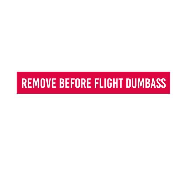 Aviation Safety Decal - Safety Decal - Aviation Decal - Funny Aviation Sticker - Funny Aviation Decal  - remove before flight dumbass - remove before flight - remove before flight sticker - aviation safety decal - aviation safety sticker - cockpit marking - cockpit placard