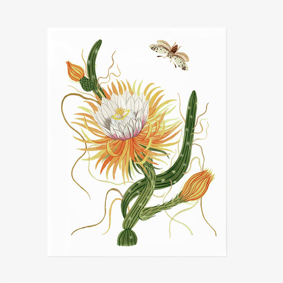 Night Blooming Cereus | Giclée Art Print