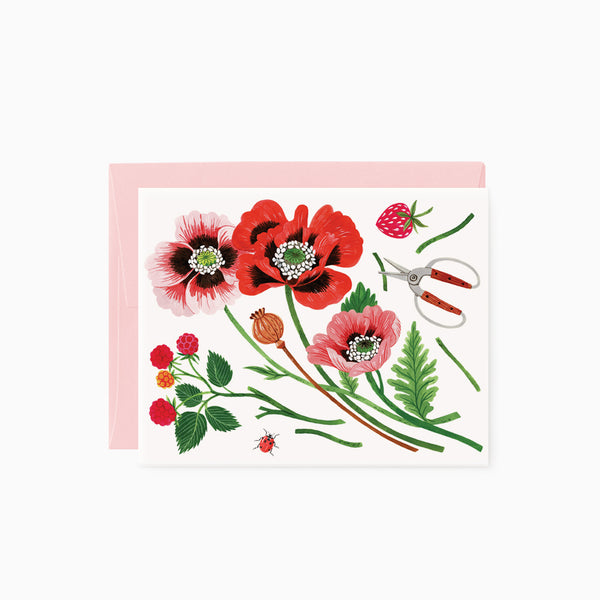 Field Flowers | greeting card