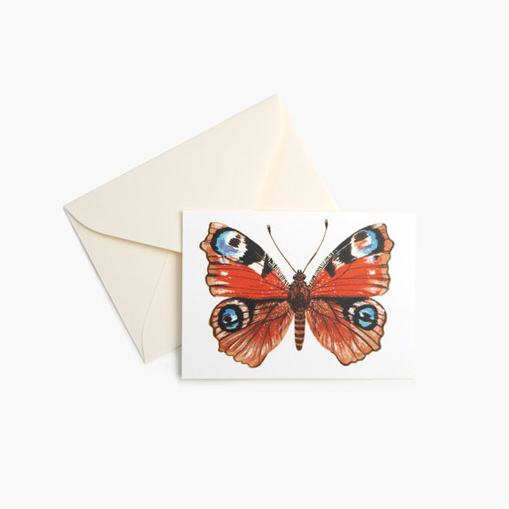 Peacock Butterfly | Mini Cards
