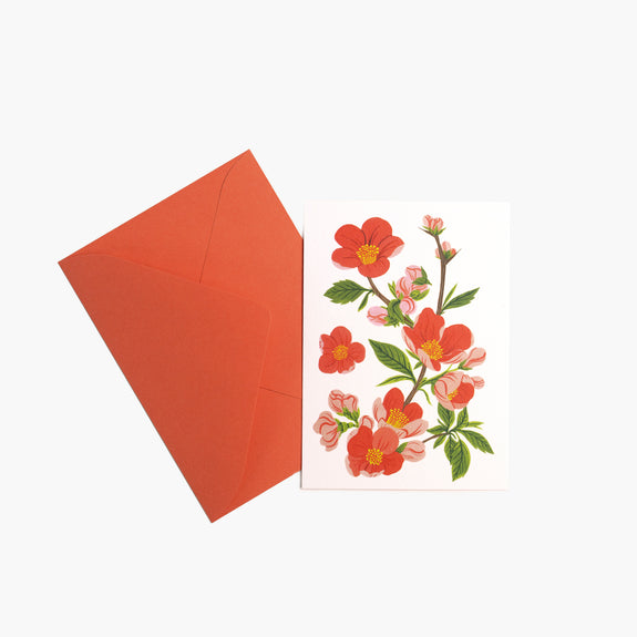 Red Flowering Quince | Mini Cards