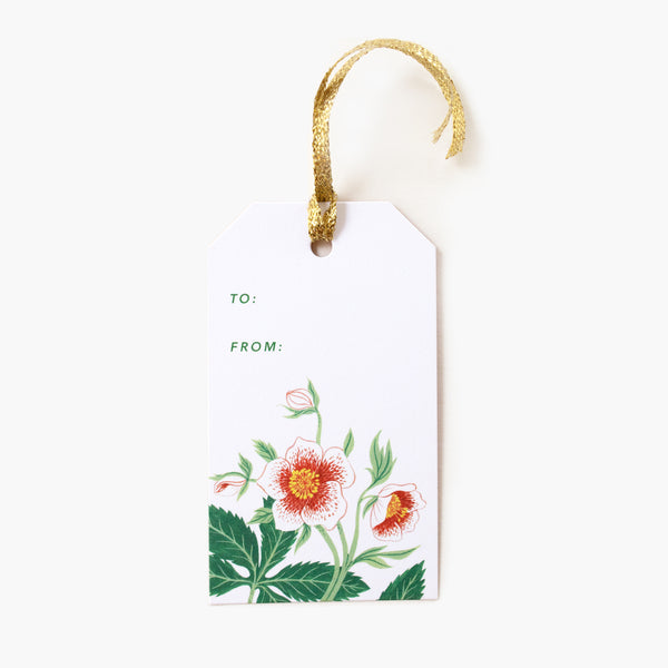 Christmas Rose Gift Tags | Set of 8