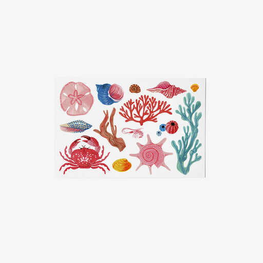 Sea Creatures postcard