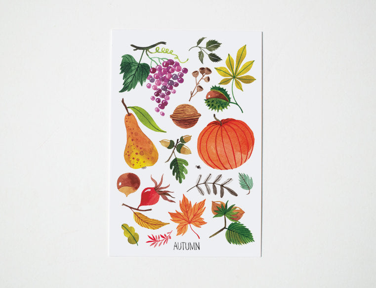 Seasons | Set of 4 postcards