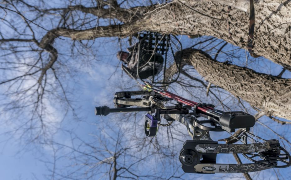 How To Choose A Treestand