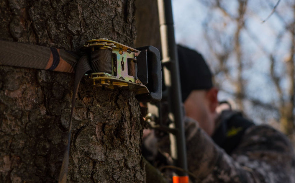 Hunting Access Strategy For Whitetails
