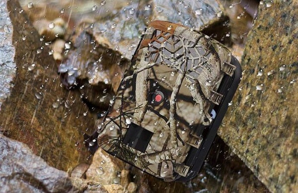 Hunting Trail Camera Buying Guide for The Coming 2019