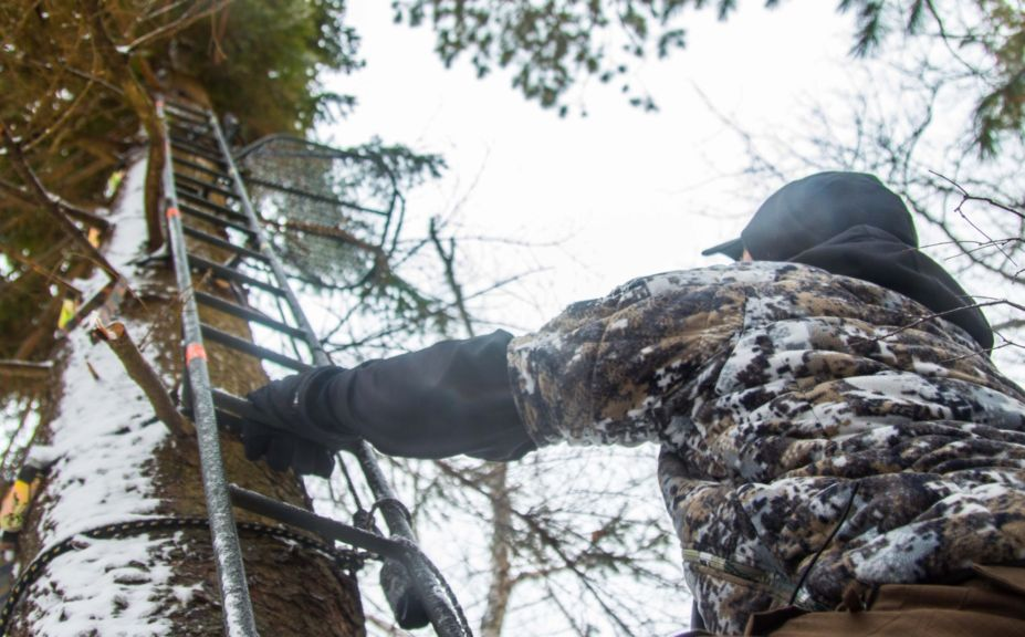 Important Treestand Tactics For Whitetails