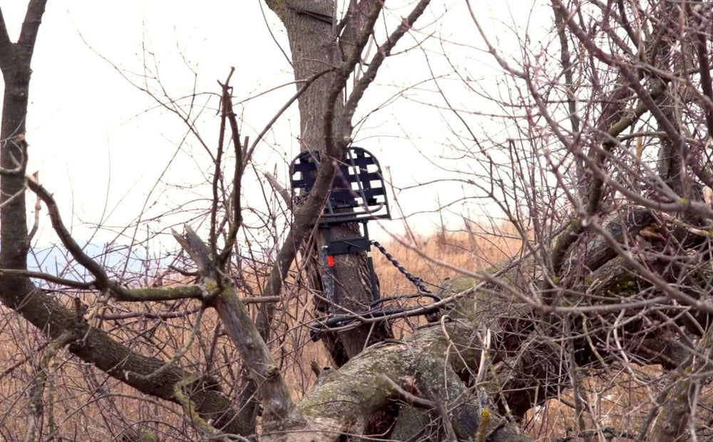 Low Impact Treestand Entrance Strategies