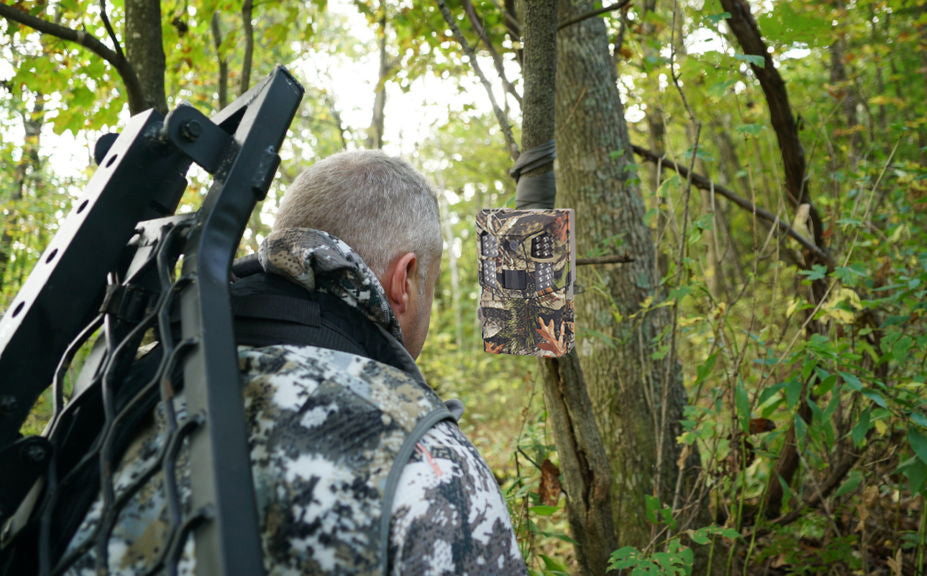 September and October Bowhunting Strategies