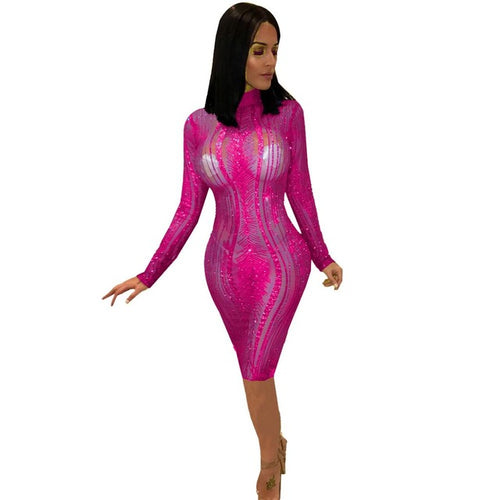 Long Sleeve Turtleneck Sheer Mesh Sequins Bodycon Celebrity Party Dress