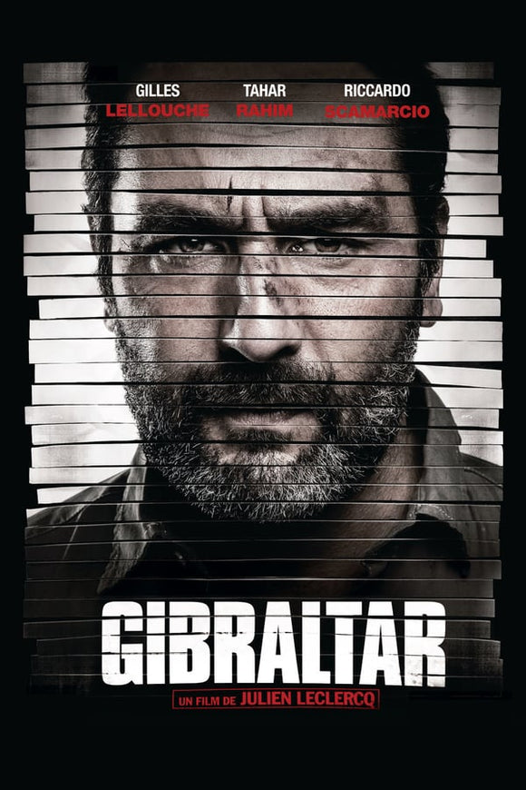 The Informant (Gibraltar) 2013