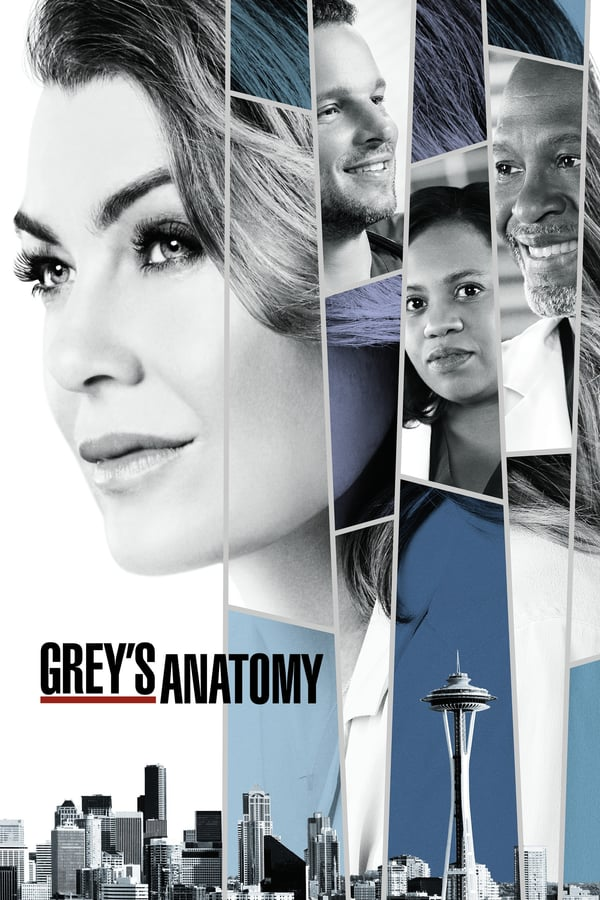 Grey's Anatomy Season 14 2017
