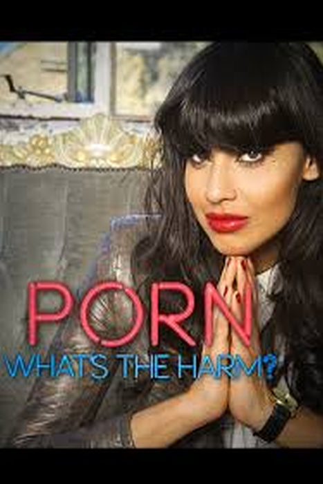 Porn: What's the Harm? 2014