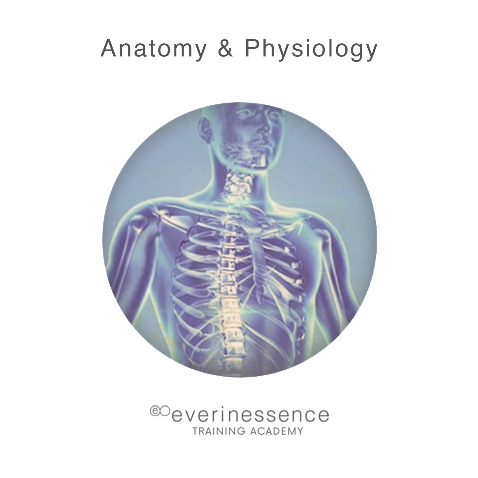 Anatomy & Physiology (Training Course) – everinessence
