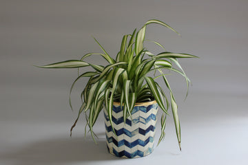 Blue and White Bone Inlay Medium Planter