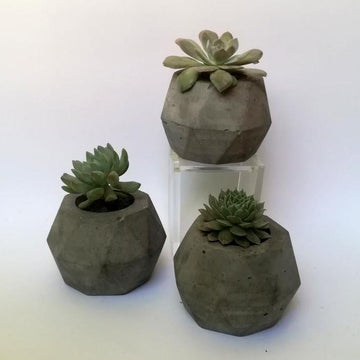 Decoration Items - Concrete Geometrical Plain Plant Pot