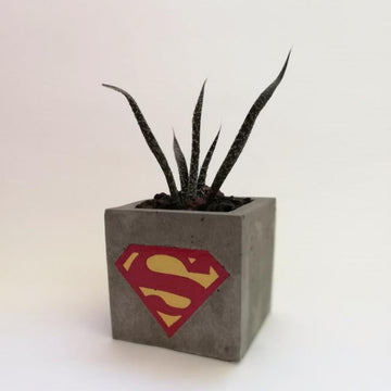 Decoration Items - Concrete Plant Pot