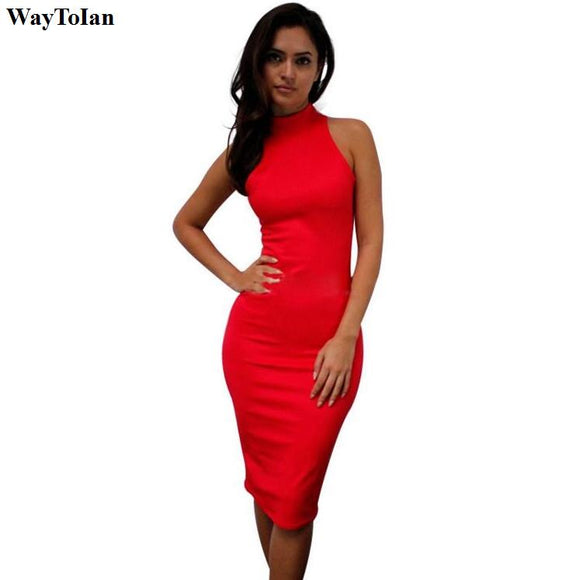 WayToIan Turtle Neck Women Dress