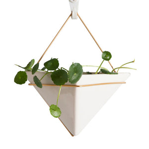 Ceramic Flowerpots With Gold Metal Wall Hanging Suitable Bonsai Interior Decorations - Venim World Class