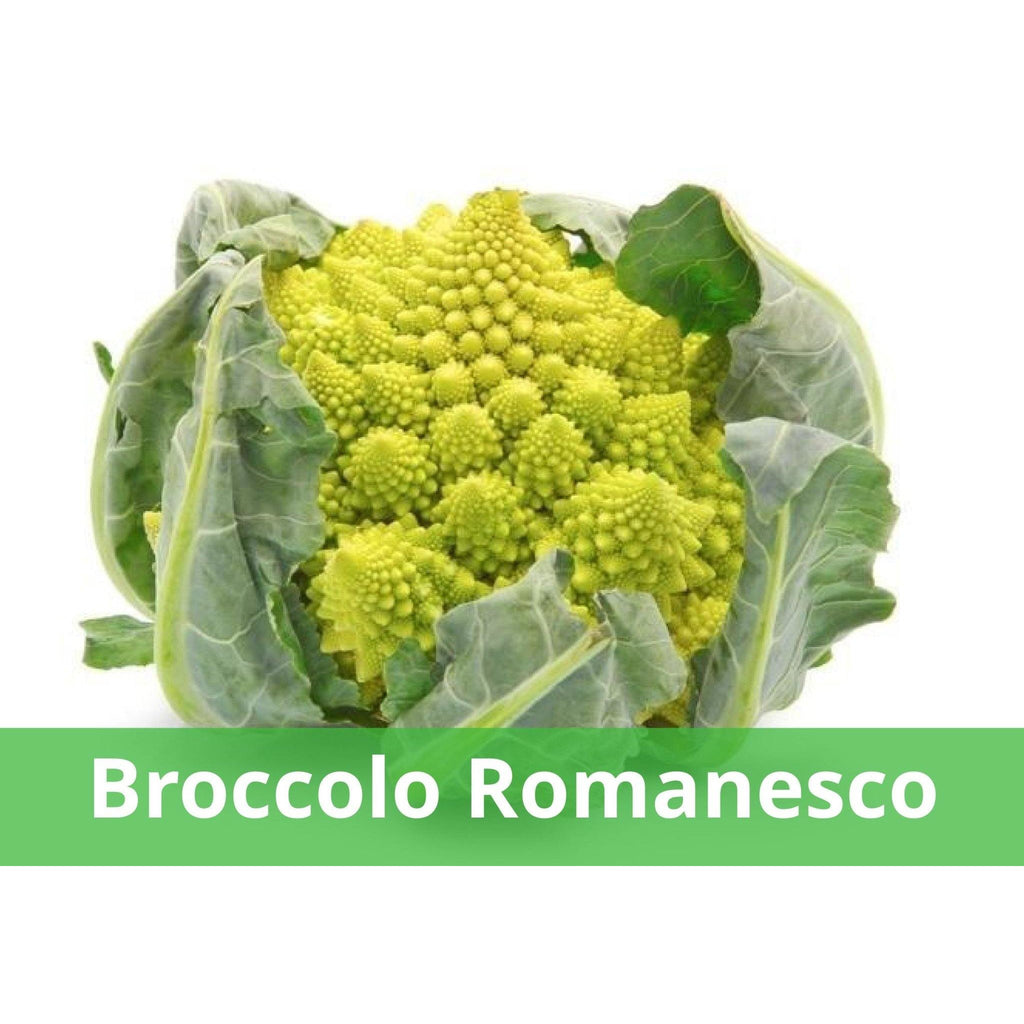 broccolo romanesco a domicilio | Justfruit