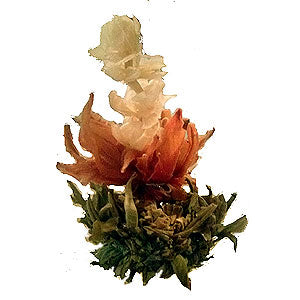 Blooming/Flowering Teas
