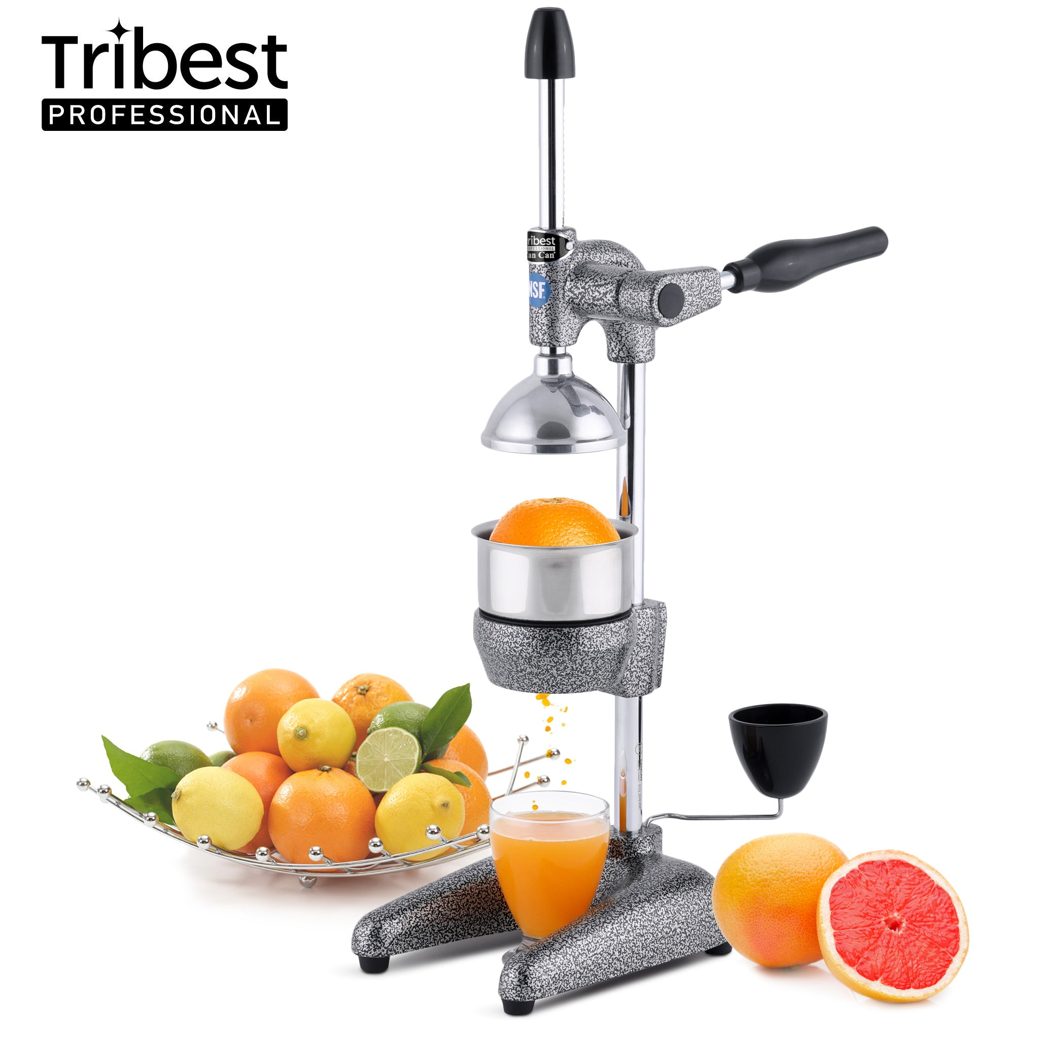 Tribest Professional Cancan Manual Juice Press MJP-100 in Gray