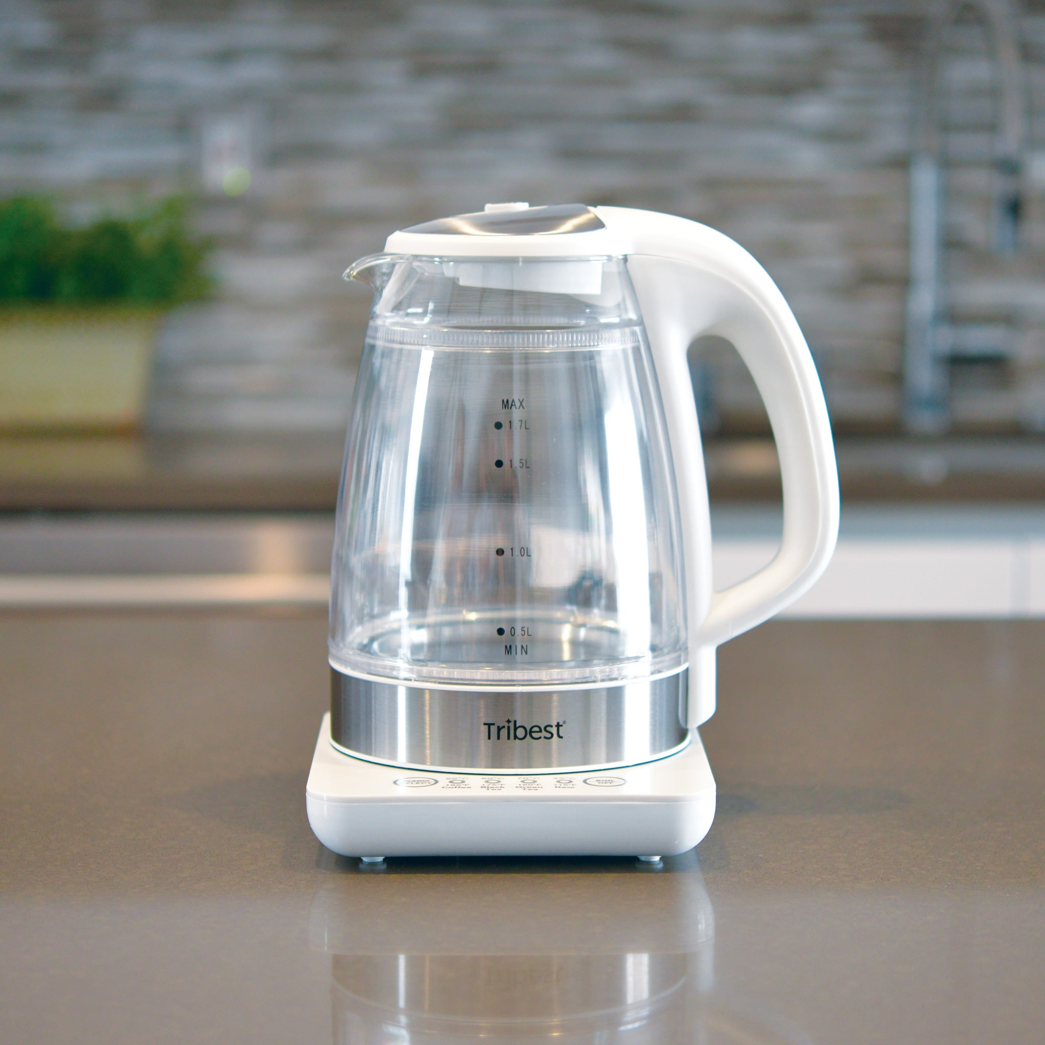 Raw Tea Kettle® Glass Electric Water Kettle GKD-450-B - Tribest