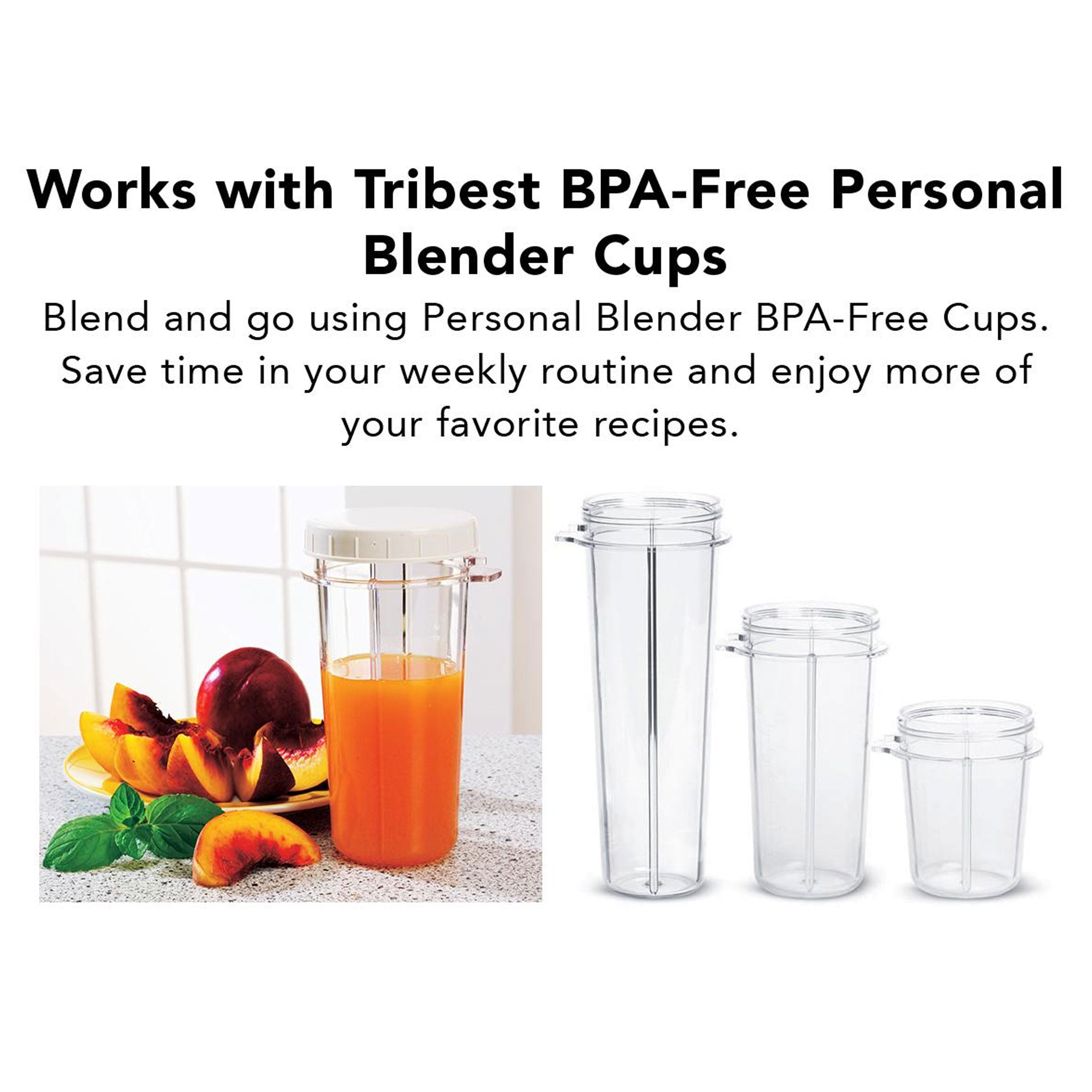 Personal Blender II Mason Jar Ready (Family16-Piece Set) in Gray PB-420GY-A - Works with Personal Blender Cups from Tribest - Tribest
