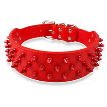 Studded Collar in Red/Red ( 2 in.)