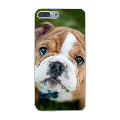 Bulldog Puppy Iphone Case (Multi)